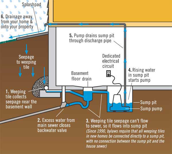 Basement Water Local Water Damage